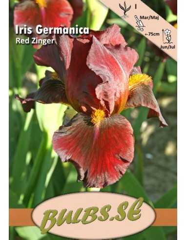 Iris Red Zinger