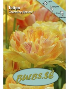 Charming Beauty®