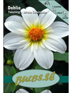 Twyning's White Chocolate -...