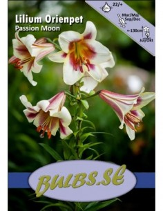 Passion Moon - n.k. puulilja